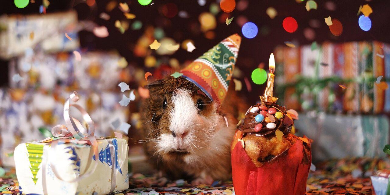 3 gode råd til fødselsdagsfest